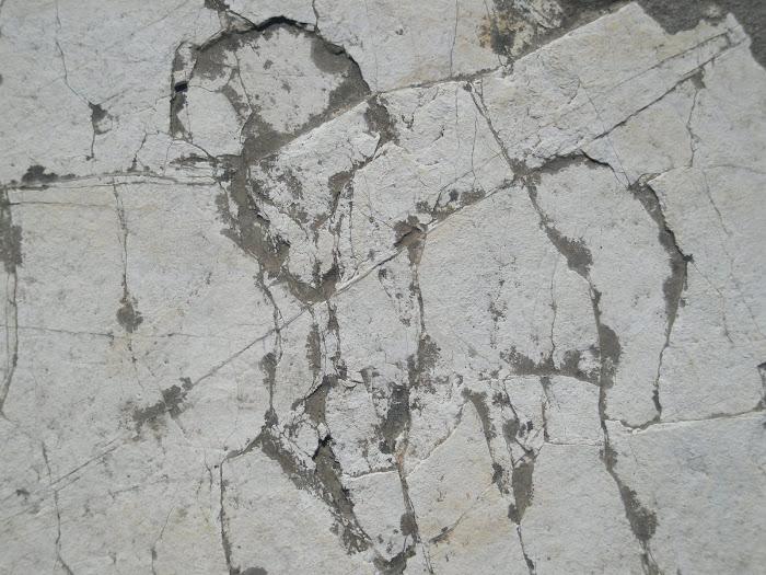 Αλογο [ σε πετρα ] Αστακος